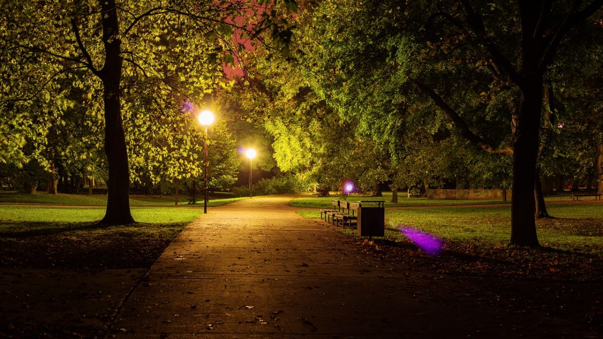 led lighting parks
